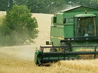 Земельное право в организации крестьянского хозяйства