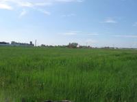 Земельный участок 150 соток, 70 км от МКАД, с. Непецино