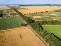 Продажа земель сельскохозяйственного назначения