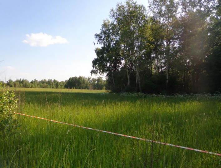 Земельный участок 12,5 соток, 70 км от МКАД по Симферопольскому шоссе, д. Клейменово