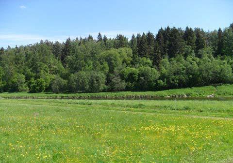 Земельный участок 14,5 соток, 56 км от МКАД по Можайскому шоссе, д. Агафоново