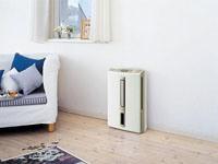 Применение осушителя воздуха в загородном доме