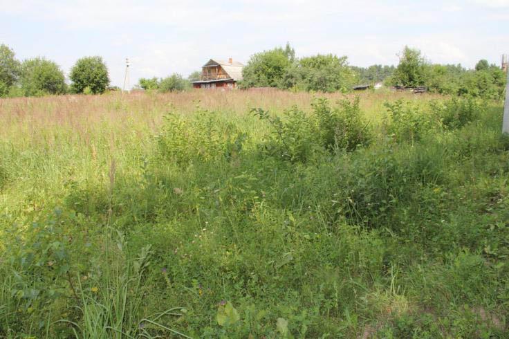Земельный участок 12 соток, 63 км от МКАД по Каширскому шоссе, с. Семеновское