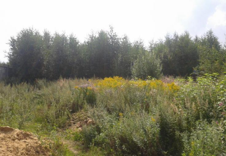 Земельный участок 16,3 сотки, 13 км от МКАД по Новорижскому шоссе, с. Николо-Урюпино