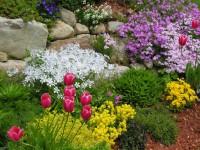 Купить участок в Подмосковье – создать маленький сад своими руками