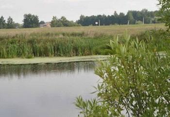 Земельный участок 10 соток, 40 км от МКАД по Ярославскому шоссе, д. Данилово