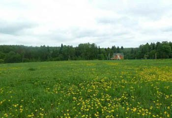 Земельный участок 24 соток, 29 км от МКАД по Дмитровскому шоссе, д. Тефаново