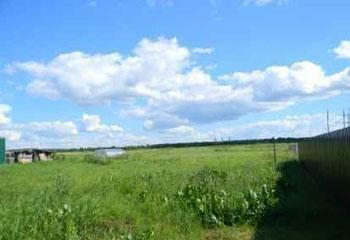 Земельный участок 15 соток, 75 км от МКАД по Дмитровскому шоссе, д. Непейно