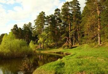 Земельный участок 12 соток, 10 км от МКАД по Дмитровскому шоссе, д. Семкино