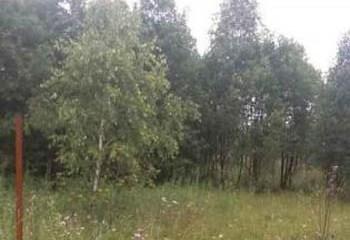 Земельный участок 20 соток, 45 км от МКАД по Дмитровскому шоссе, д. Новинки