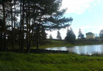 Земельный участок 200 соток, 38 км от МКАД по Дмитровскому шоссе, д. Батюшково