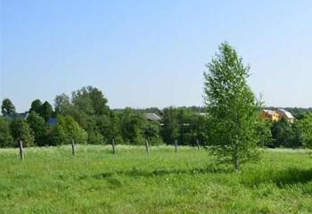 Земельный участок 15 соток, 30 км от МКАД по Дмитровскому шоссе, д. Голиково