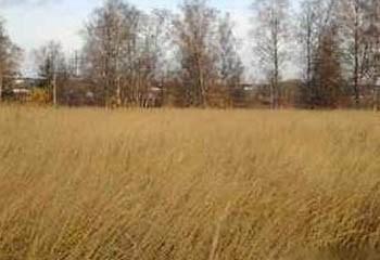 Земельный участок 10 соток, 30 км от МКАД по Дмитровскому шоссе, д. Ермолино