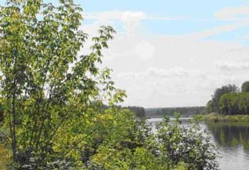 Земельный участок 42 соток, 37 км от МКАД по Дмитровскому шоссе, д. Батюшково