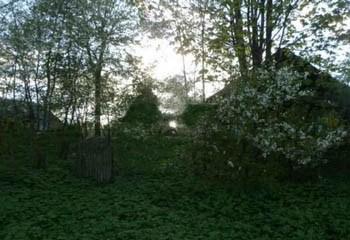 Земельный участок 20 соток, 45 км от МКАД по Дмитровскому шоссе, д. Елизаветино