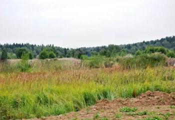 Земельный участок 7 соток, 55 км от МКАД по Дмитровскому шоссе, д. Сергейково
