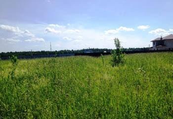 Земельный участок 15 соток, 55 км от МКАД по Дмитровскому шоссе, д. Бородино