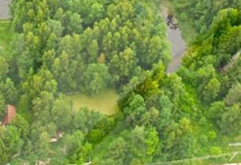 Земельный участок 80 соток, 29 км от МКАД по Дмитровскому шоссе, д. Лупаново