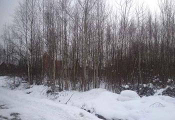 Земельный участок 10 соток, 25 км от МКАД по Дмитровскому шоссе, д. Рыбаки