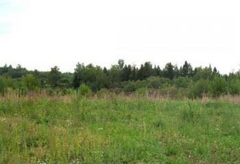 Земельный участок 36.09 соток, 34 км от МКАД по Дмитровскому шоссе, д. Удино