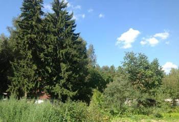 Земельный участок 9 соток, 22 км от МКАД по Дмитровскому шоссе, п. Некрасовский
