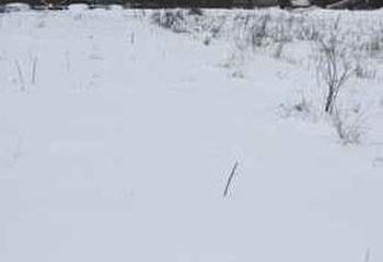 Земельный участок 7 соток, 60 км от МКАД по Дмитровскому шоссе, п. Буденновец