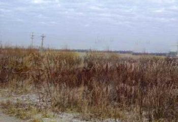 Земельный участок 12 соток, 16 км от МКАД по Дмитровскому шоссе, д. Новосельцево