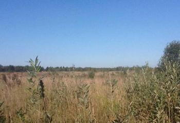 Земельный участок 16 соток, 23 км от МКАД по Дмитровскому шоссе, д. Хлябово