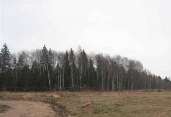 Земельный участок 17 соток, 62 км от МКАД по Дмитровскому шоссе, д. Костино