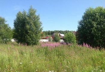 Земельный участок 32 соток, 50 км от МКАД по Дмитровскому шоссе, д. Долгиниха