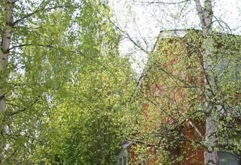 Земельный участок 6 соток, 55 км от МКАД по Дмитровскому шоссе, д. Ярцево