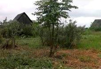 Земельный участок 6 соток, 62 км от МКАД по Дмитровскому шоссе, п. Буденновец