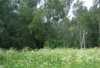 Земельный участок 12 соток, 92 км от МКАД по Дмитровскому шоссе, п. Вербилки