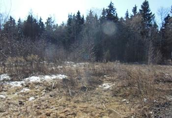 Земельный участок 10 соток, 23 км от МКАД по Дмитровскому шоссе, д. Марфино