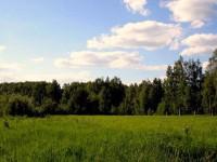 Земельные участки Серпуховского района - пик популярности
